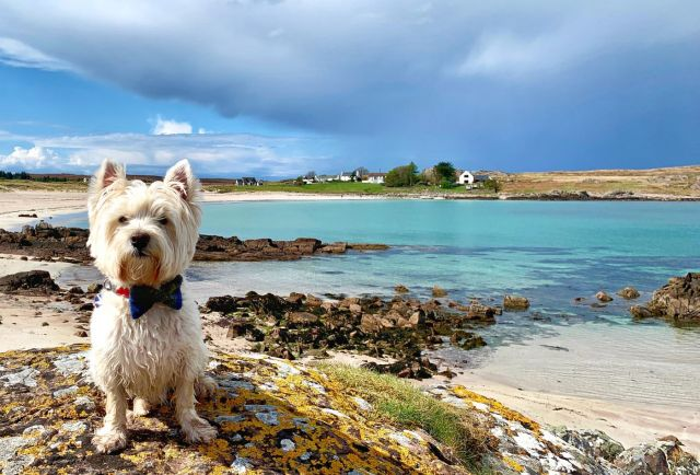 Touring Scotland in a motorhome: a road trip in Aberdeenshire and Moray